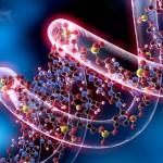 Pasos esperanzadores para tratar la Esclerosis Múltiple con terapia celular