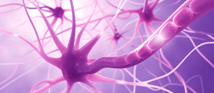 tratamiento-para-esclerosis-multiple