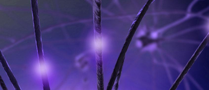 El primer fármaco contra la esclerosis múltiple
