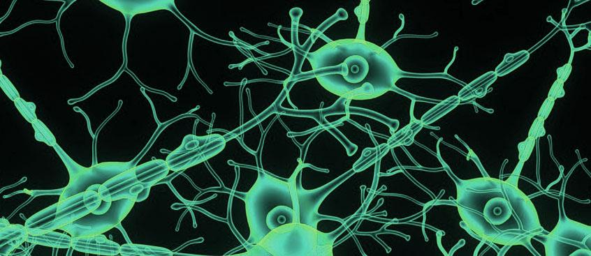 tysabri en esclerosis multiple