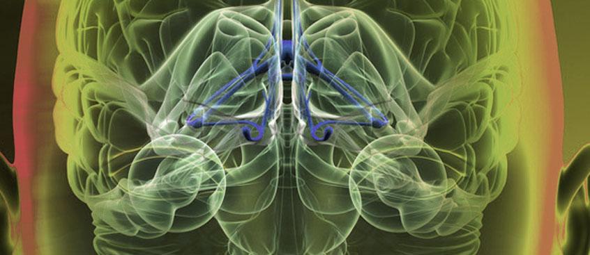 Datos demuestran que NATALIZUMAB en Esclerosis Múltiple fomenta remielinización