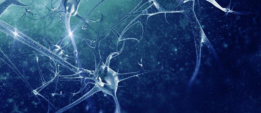 Fampridine-SR es un nuevo compuesto oral de liberación sostenida para Esclerosis Múltiple