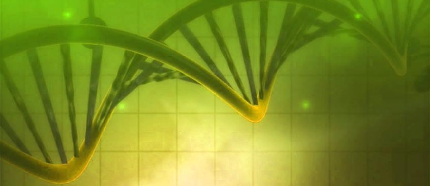 terapia_genetica_esclerosis_multiple