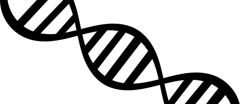 gen_predispone_esclerosis_multiple