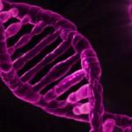 Identifican un gen asociado a las formas progresivas de Esclerosis Múltiple