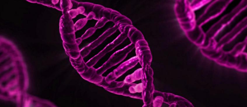 gen_asociaciado_esclerosis_multiple