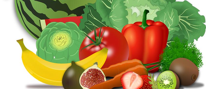 la ingesta de una grasa de la dieta ayuda a tratar la Esclerosis Múltiple
