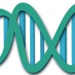 29 variaciones genéticas nuevas relacionadas con la esclerosis múltiple