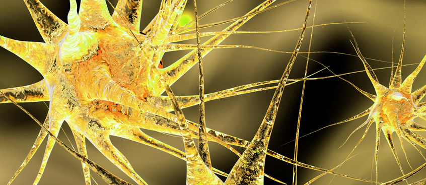 Una nanopartícula detiene la esclerosis múltiple en un ensayo con ratones
