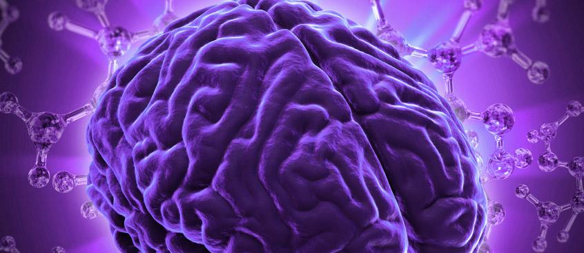 Logran revertir la degeneración neuronal en patologías como la Esclerosis Múltiple