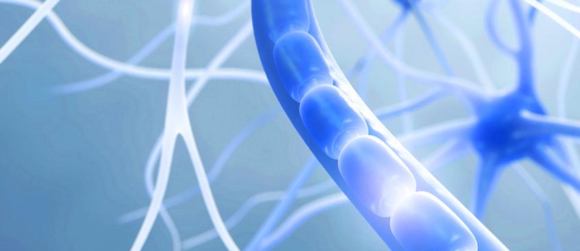 El deterioro cognitivo se presenta en niños y adolescentes con esclerosis múltiple