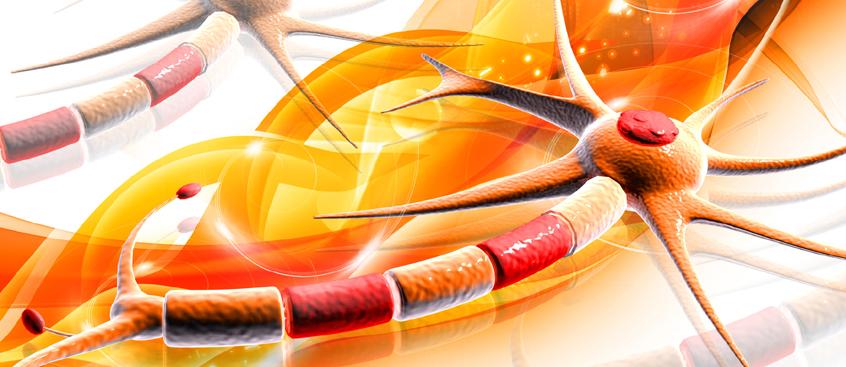 Expertos en Esclerosis Múltiple analizan el tratamiento de la enfermedad