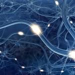 Avance científico en enfermedades desmielinizantes como la Esclerosis Múltiple
