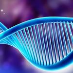 La remielinización, es el próximo objetivo en pacientes con Esclerosis Múltiple