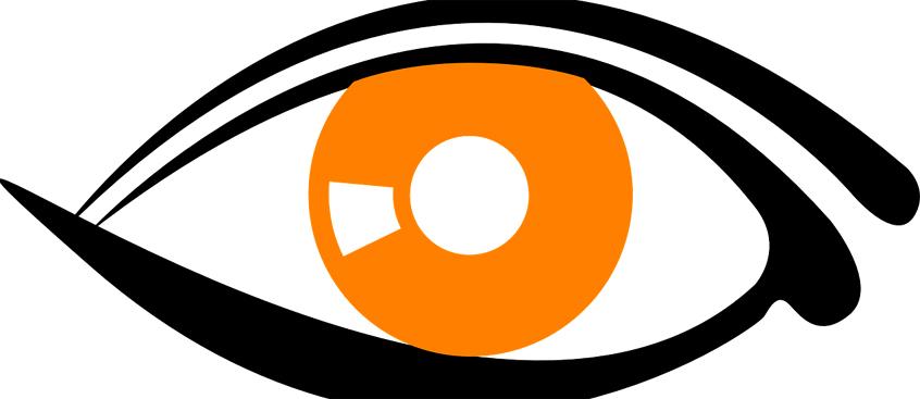 El estudio de la retina permite visualizar la evolución de la Esclerosis Múltiple