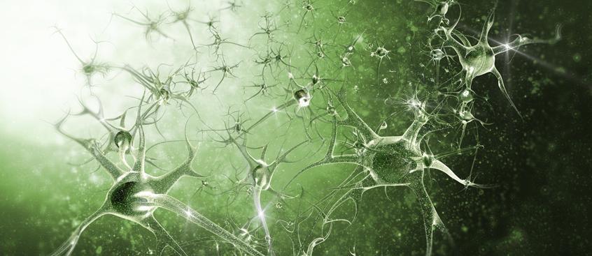progresión de la esclerosis múltiple