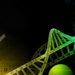 Destruir las células B podría ayudar a reducir la actividad de la Esclerosis Múltiple