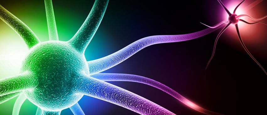 La Farmacia Hospitalaria y Neurología, clave para la Esclerosis Múltiple