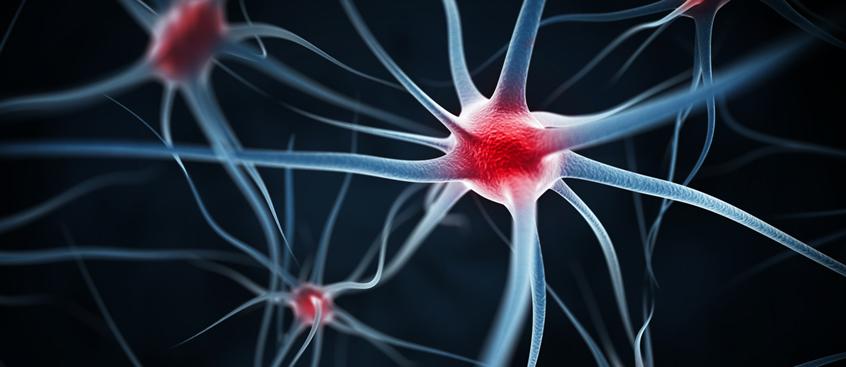 consiguen detener la esclerosis múltiple