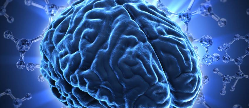Las células inmunes, vinculadas con la aparición de la demencia tras el ictus