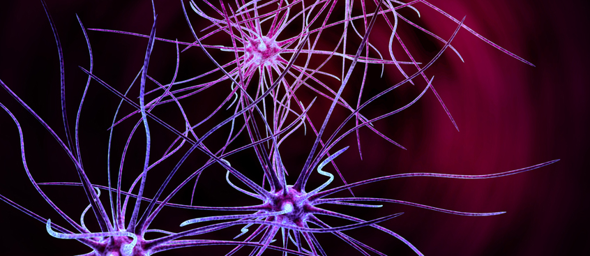 Dimetilfumarato, aprobado para pacientes con Esclerosis Múltiple Remitente