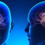 Investigadores descubren un hallazgo clave en la lucha contra la Esclerosis Múltiple