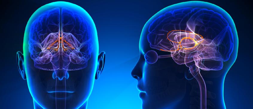 hallazgo clave para la esclerosis múltiple