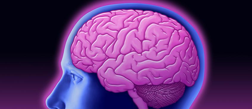 Dos fármacos para la piel revierten el daño causado por la Esclerosis Múltiple