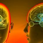 Esclerosis Múltiple: encuentran un vínculo entre el cerebro y el sistema inmune