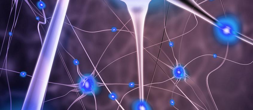 Descubiertos receptores clave para la remielinización en la Esclerosis Múltiple