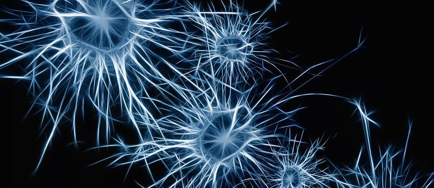 biomarcadores para la esclerosis múltiple