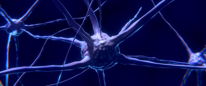 En esclerosis múltiple se está cada vez más cerca de predecir la evolución de cada paciente