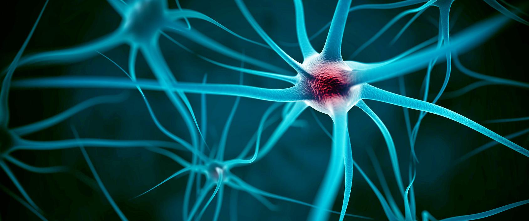 trasplante células madre para esclerosis múltiple