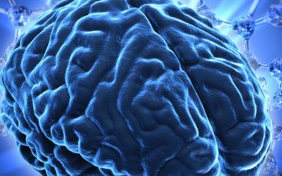 Científicos noruegos estudian la relación de la Esclerosis Múltiple y el riesgo de cáncer