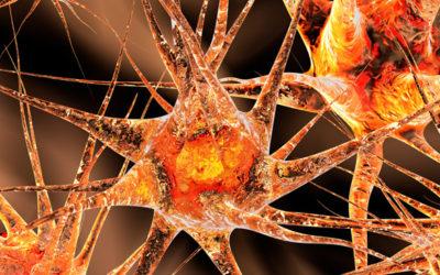 Neurorrehabilitación de la atención durante el confinamiento por el COVID-19