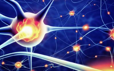 Neurorrehabilitación de la memoria durante el confinamiento por el COVID-19