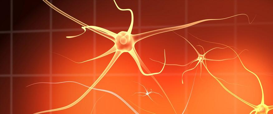 Cambia el funcionamiento cerebral con afirmaciones positivas
